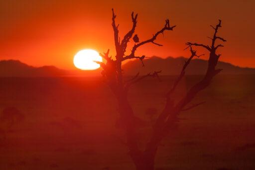 07/2012   Warum ist der Sonnenuntergang so rot?